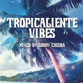 Empresarios present Tropicaliente Vibes