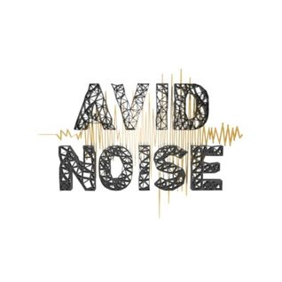Avid Noise - Podcast 001: Dan Hayes