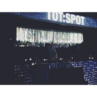 Cross & Shyam Live Mix @ TOT.spot : 84UDO FEST : 09.08.14