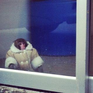 MonkeyTimeRadioHour_7-Nov-2012