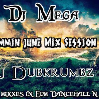 Dj Mega and Dj Dubkrumbz Mix Vol #2