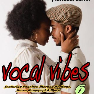 VOCAL VIBES V.6 - PLATINUM CARTEL REGGAE MIX