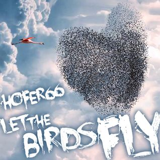 hofer66 - let the birds fly - live at ibiza global radio - 160118