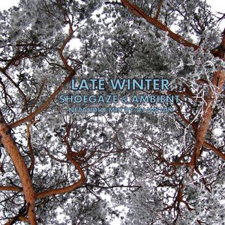 Late Winter [Netaudio café .05]
