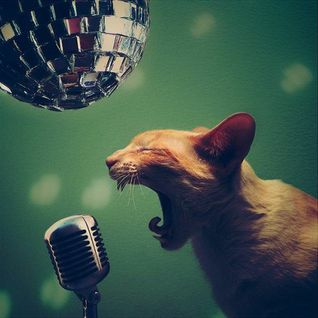 Cat Crooner