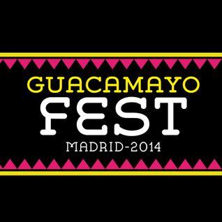 Sesión Mix Artistas del Guacamayo Fest Madrid 2014