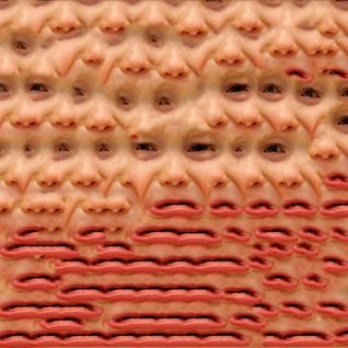 LSD089