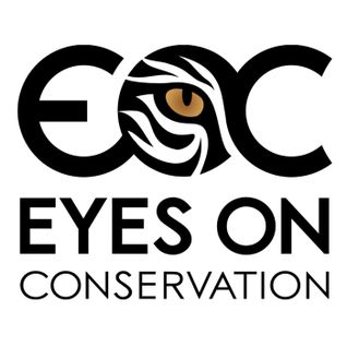 EOC 006: Conservation of Giraffes and other ungulates in Tanzania with Monica Bond