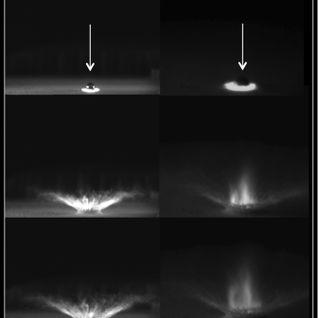 feryne - Impacts III