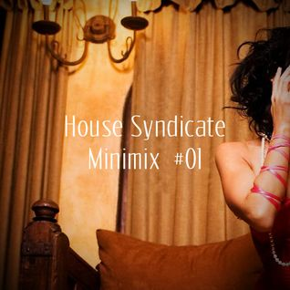 House Syndicate Minimix #01
