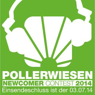 Great Junk - PollerWiesen Newcomer Contest 2014
