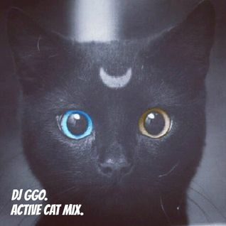 DjGgo Active Cat Mix.