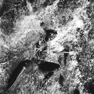 Dokta Venom'z 'Dance Rituals Volume#2 September 2016' Deep House/Techno Mix