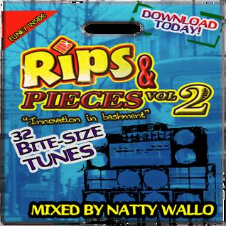 Rips & Pieces VOL.2 (mix 2013)