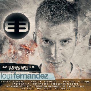Loui Fernandez - Podcast - Elastic Beatz Radio NYC