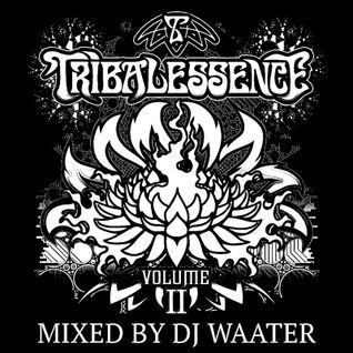 Tribalessence - Volume II (Mixed)