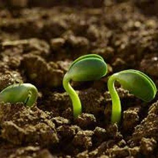 2016-07-28│Presentacion de ley de agroecologia│Carlos Manessi - Cepronat
