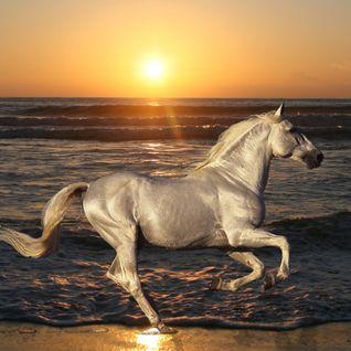 Sunset & sand - Remember 2012