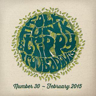 Folk Funk and Trippy Troubadours 30