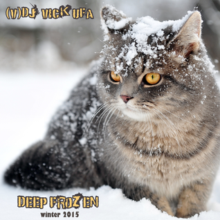 DJ Vick Ufa - Deep Frozen (winter 2015) promo 3-2015