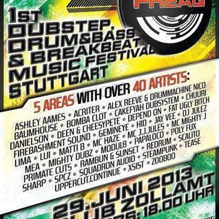 DJ STEAMPUNK & MC HAZE - FREAQ FESTIVAL 2013 @ Club Zollamt (29-06-2013)