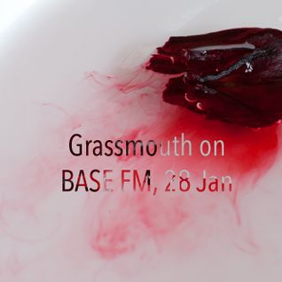 Grassmouth on BASE FM, 28 Jan - Lady, Reva DeVito, Insightful