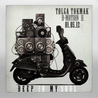 Tolga TOKMAK  [Deep Motion II]
