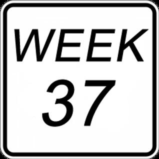 Marvin Green's soulful blend week 37