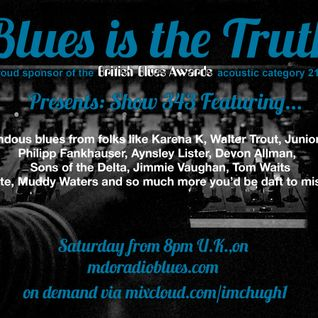 Blues is the Truth 343