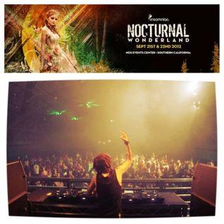 DSKOTEK Live @ Nocturnal Wonderland 2012 (9-21-12)