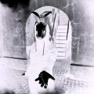 Follow the white rabbit (club edit)