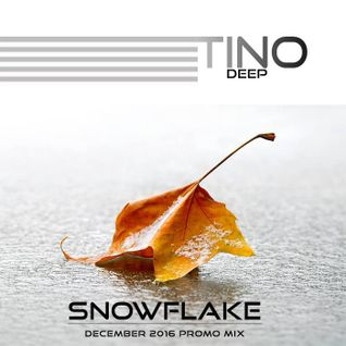 Tino Deep - Snowflake (December 2016 Promo Mix)