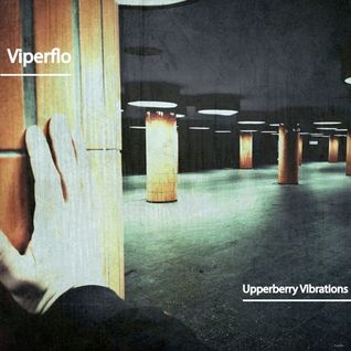 viperflo - The other places (Upperberry Vibrations Podcast)