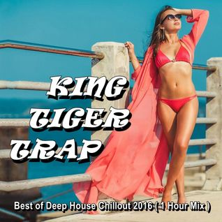 Best of Deep House Chillout 2016 (1 Hour Mix) Compiled by KING TIGER TRAP