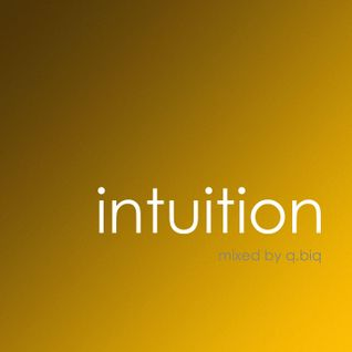 Intuition | amber | mixed by q.biq | 27.07.2011