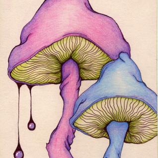 Mushroom Sessions 1(28/10/2012)