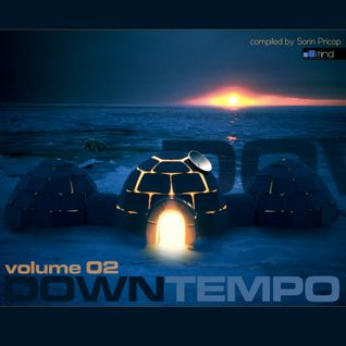V.A. - Downtempo Volume 02