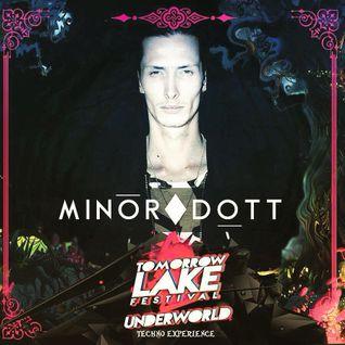 DK035 - Minor Dott Live @ Tomorrowlake Festival 15.08.2015