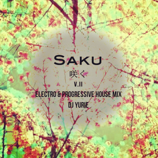 Saku V.II (Electro & Progressive House Mix)