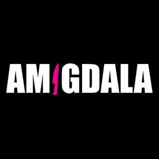 set AMIGDALA Settembre 2015