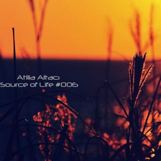 Atilla Altacı - Source of Life #006