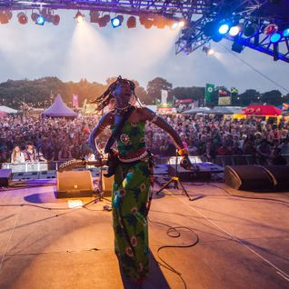 Shambala 2014- A taste of what's to come!