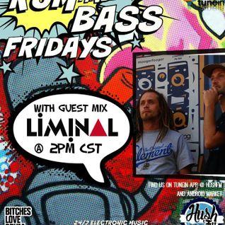 !Live Rum & Bass Fridays @BrandonDNB with @LiminalDNB on @HushFMRadio - www.hushfm.com(6-19-2015)