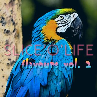 SLICE'O'LIFE - Flavours vol. 2