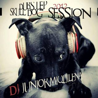 Dj Junior Miquilena - Dubstep Skull Dog Session 2012
