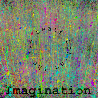 Imagination ( live from the chocolate factory )