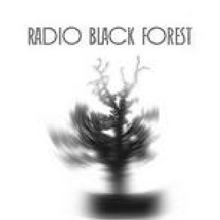 Phantom Circuit #50 (20th Oct. 2010) - Part 2: Radio Black Forest interview continues...