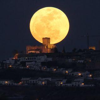 Zenit Moon