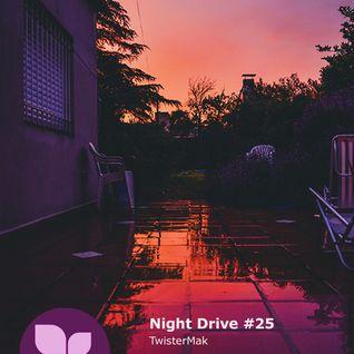 Night Drive #25