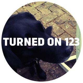 Turned On 123: Henrik Schwarz, Cassy, Nick Höppner, Recloose, Redshape, Atjazz, Pantha Du Prince